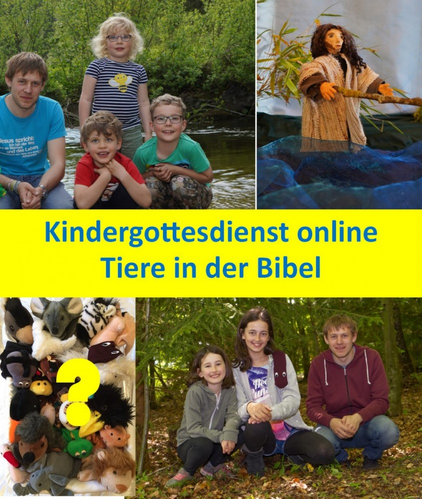 Kigo online Peißenberg